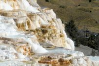 Yellowstone - Mammoth Hot Springs - 19