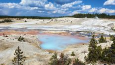 Yellowstone - Norris Geyser Basin 6