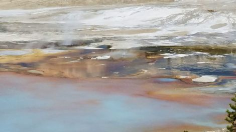 Yellowstone - Norris Geyser Basin 9