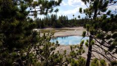 Yellowstone - Norris Geyser Basin - Black Basin - 3