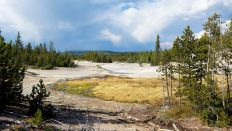 Yellowstone - Norris Geyser Basin - Black Basin - 4
