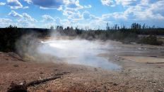 Yellowstone - Norris Geyser Basin - Black Basin - 5