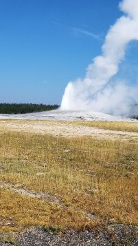Yellowstone - Old Faithful - 1