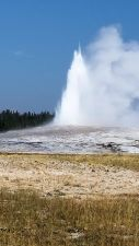 Yellowstone - Old Faithful - 2