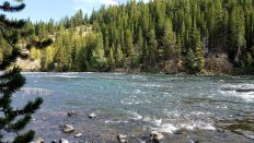 Yellowstone River - Rapids 3