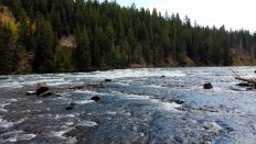 Yellowstone River - Rapids 4