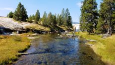 Yellowstone - UGB - Firehole River - 1