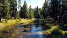 Yellowstone - UGB - Firehole River - 2
