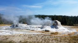 Yellowstone - UGB - Grotto Geyser 1
