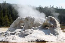 Yellowstone - UGB - Grotto Geyser 2
