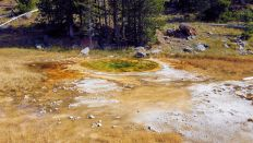 Yellowstone - Upper Geyser Basin - 10