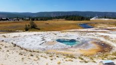 Yellowstone - Upper Geyser Basin - 15