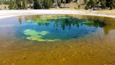 Yellowstone - Upper Geyser Basin - 9
