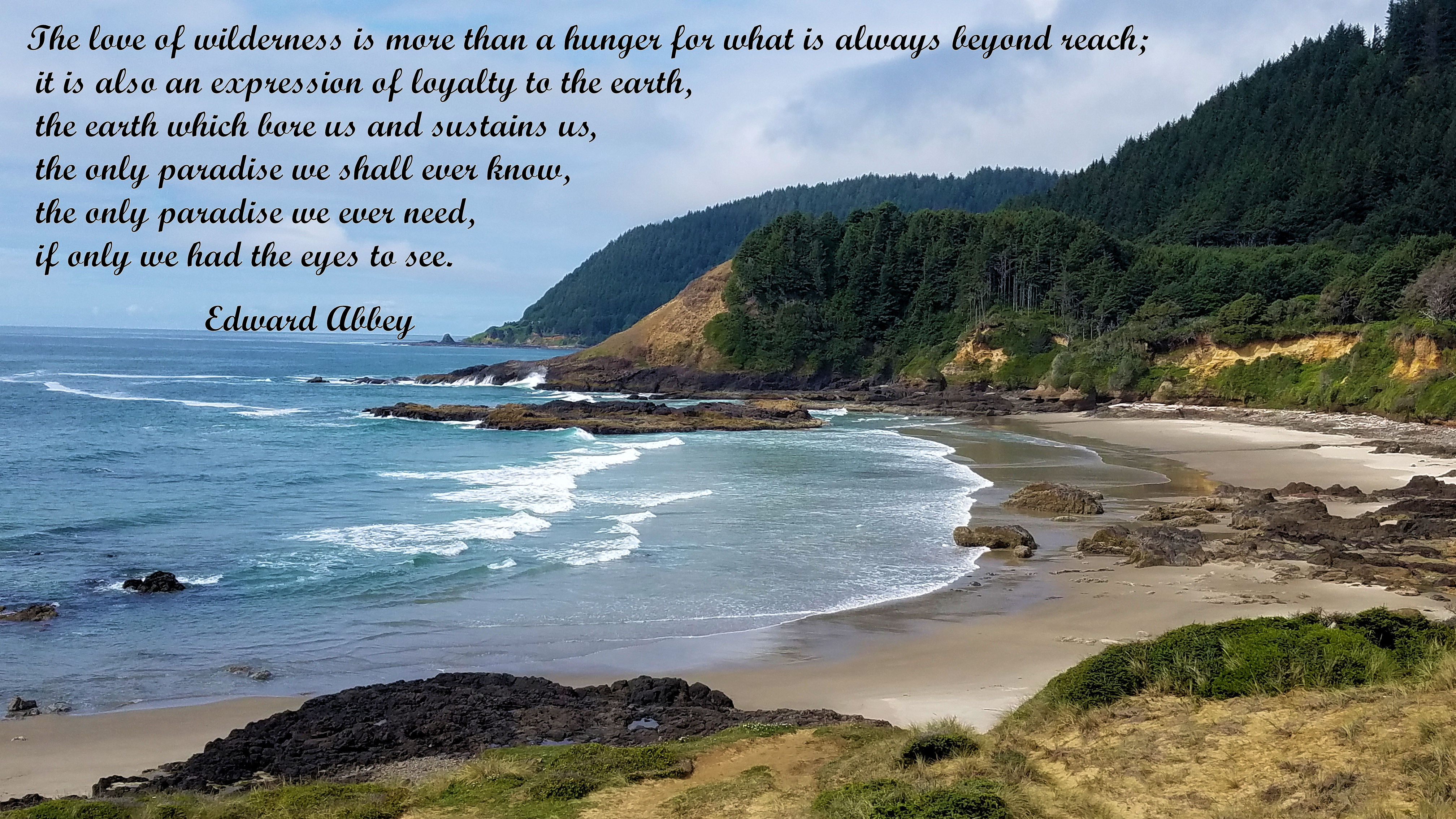 PC - HW 101 - Beaches - 17 + Edward Abby Quote