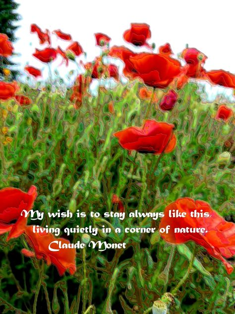 Red Poppy Field - 2+Enamel+Monet Quote