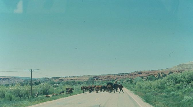 Open Range – Revisited