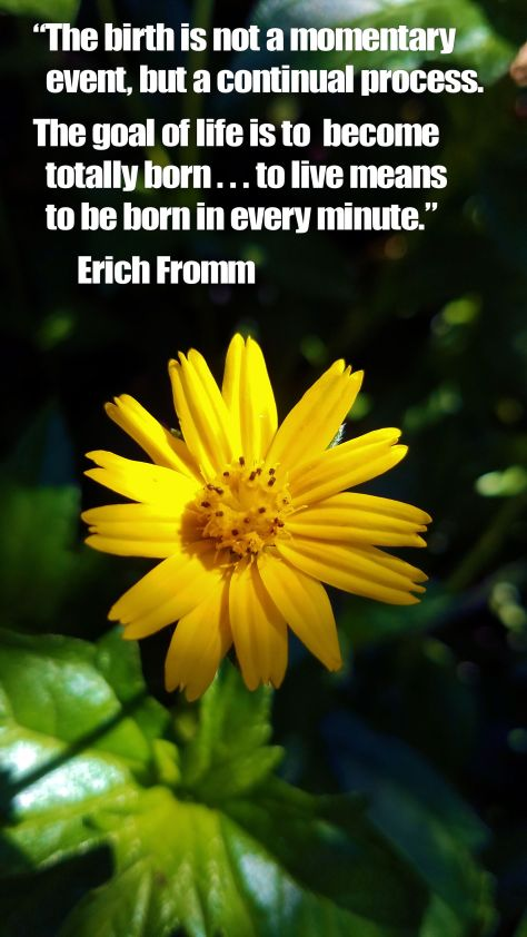 Tucson Botanical Gardens with Erich Fromm Quote