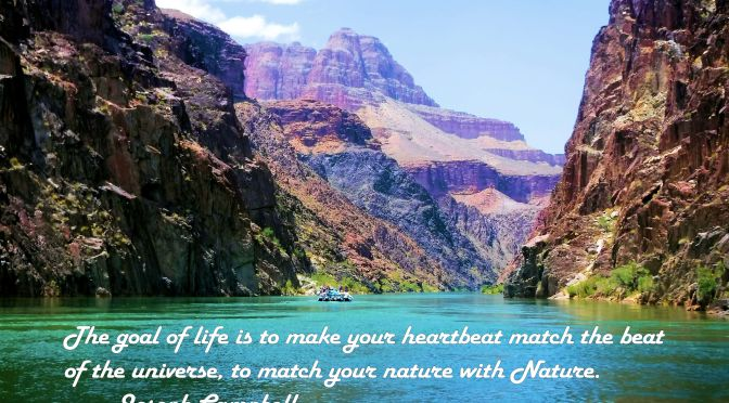 """Match your Nature with Nature"""